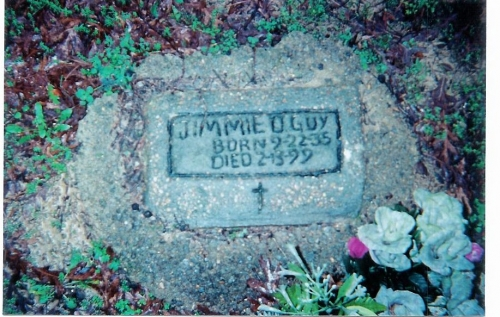 Jimmie D. (Sidney) Guy (5th Generation)